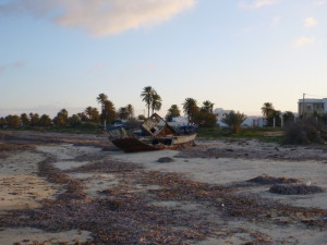 Seegras am Mittelmeerstrand