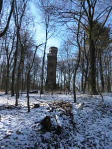 Vonderheydt-Turm im Winterwald